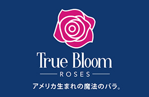 True_Bloom_icach-s